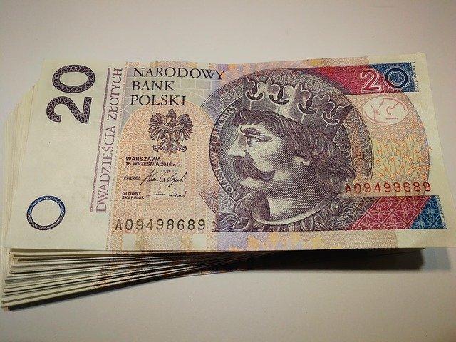 plik banknotów dwudziestozłotowych